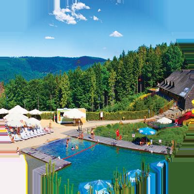 User Day 2017 w Hotelu Kocierz - Aquapark